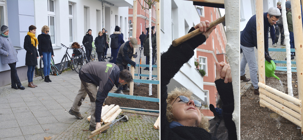 die-reha-stadtbaumpflanzung-8.12.2020